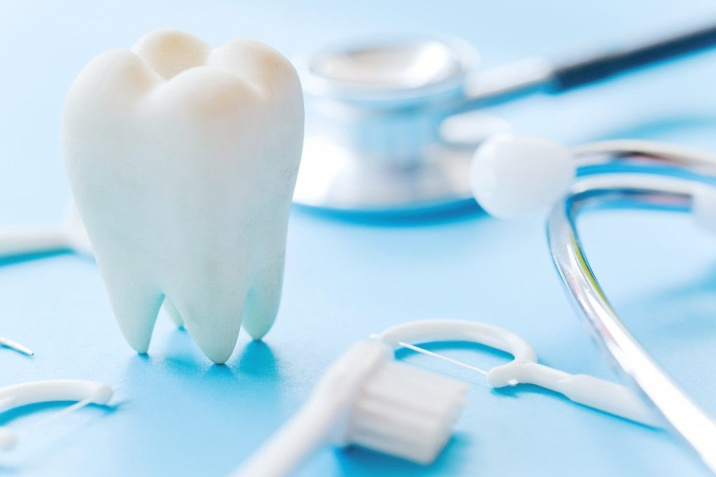 a tooth model